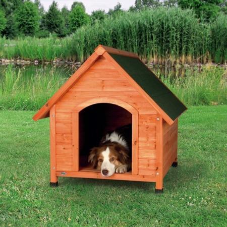 Buda dla psa z regulowanymi nóżkami, z drewna sosnowego - rozmiar S