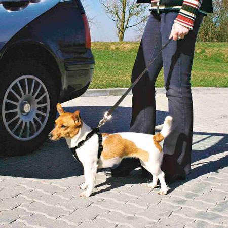 Proste szelki do samochodu dla psa - czarne - rozmiar XS