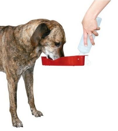 Butelka turystyczna z miską na wodę dla psa - 700 ml