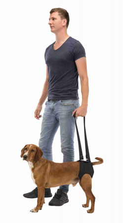 Uprząż rehabilitacyjna szelki dla psa
